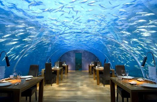 楽園モルディブのコンラッドホテルで水中レストランディナーに舌鼓!4WDで砂漠サファリツアーに挑戦するドバイ!エミレーツ航空で2都市周遊モルディブ&ドバイ8日間